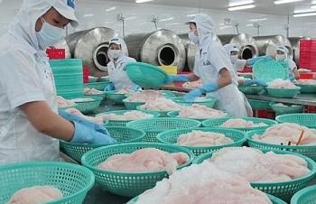 Xuất khẩu cá tra sang EU tăng trưởng mạnh