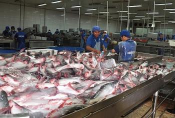 Mở rộng thị trường xuất khẩu cá tra