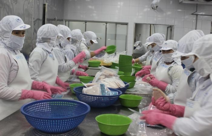 Doanh nghiệp thủy sản chủ động kinh phí mua 500.000 liều vắc xin phòng Covid-19
