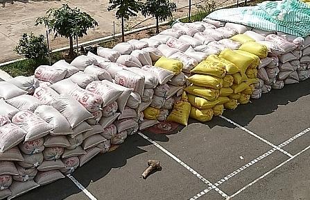Công an Đồng Tháp điều tra vụ nhập lậu gỗ, nông sản
