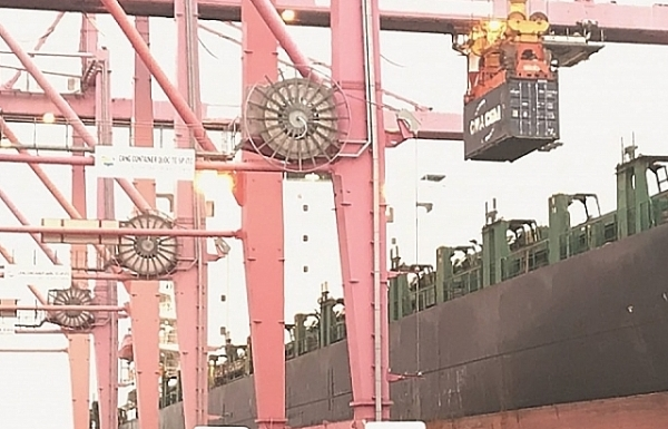 Ca nghi nhiễm Covid-19 đến làm việc tại cảng SP-ITC là nhân viên giám định