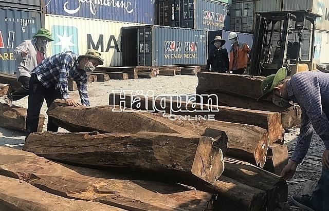 Tìm chủ của lô hàng trên 50 m3 gỗ giáng hương