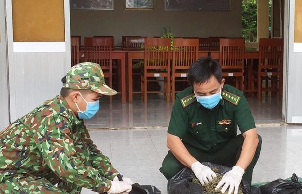 Bắt 13 kg nghi cần sa từ Campuchia về Việt Nam