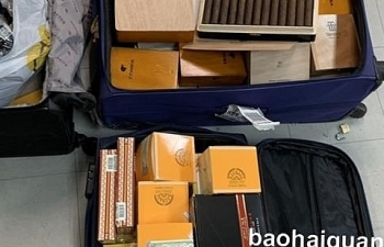 Khởi tố vụ buôn lậu xì gà qua đường hàng không