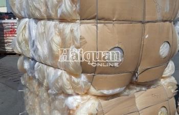 Tạm giữ 2 container phế liệu nhập khẩu