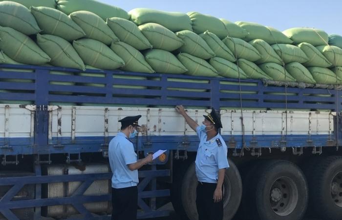 An Giang: Kim ngạch xuất khẩu tăng nhẹ