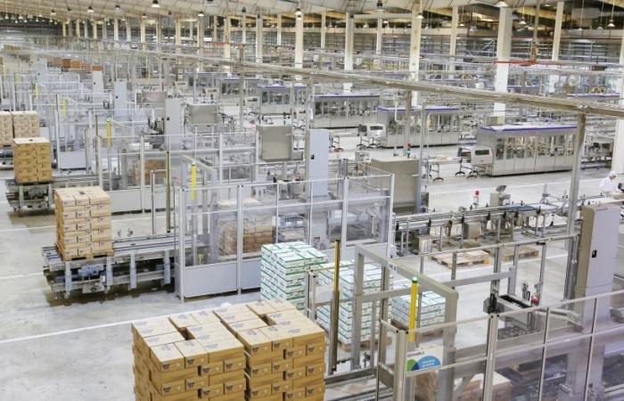 Công bố đối tác liên doanh tại philippines, Vinamilk dự kiến đưa sản phẩm ra thị trường vào tháng 9