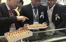 Thủy sản Minh Phú lên tiếng do bị điều tra lấn tránh thuế chống bán phá giá