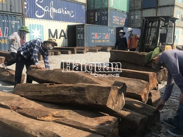 """Tìm chủ lô hàng 60 container gỗ Giáng hương """"bỏ quên"""" tại cảng"""