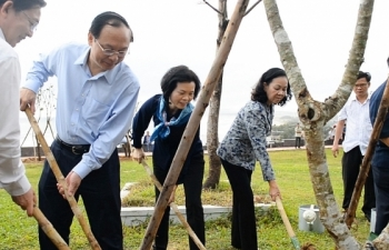 110.000 cây xanh được Vinamilk tặng người dân Bình Định