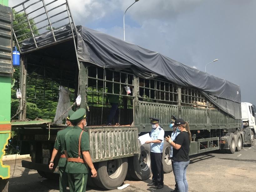 Hải quan An Giang hoả tốc chỉ đạo chống buôn lậu qua biên giới