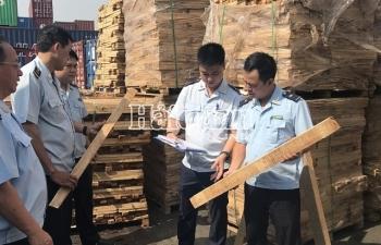 Hải quan TPHCM bắt 1.000m3 gỗ xẻxuất khẩu,trốn thuế gần 3 tỷđồng