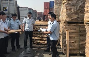 Doanh nghiệp xuất 25 container gỗ gian lận 3 tỷ tiền thuế không còn hoạt động