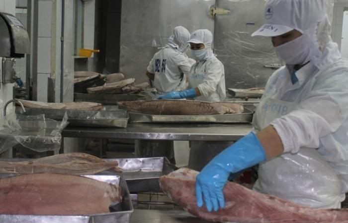 Tăng trưởng xuất khẩu thủy sản phụ thuộc rất lớn vào gỡ