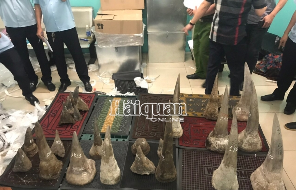 Hải quan bắt gần 1 tạ nghi sừng tê giác nhập lậu
