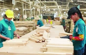 """Doanh nghiệp gỗ, thủy sản """"chới với"""" khi đối tác liên tục giãn đơn hàng"""
