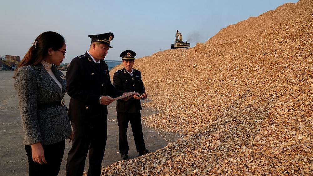 Công chức Chi cục Hải quan cửa khẩu cảng Nghi Sơn (Cục Hải quan Thanh Hóa) kiểm tra hàng hóa XNK. Ảnh: N.Linh