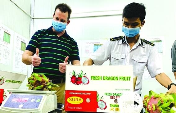 Xuất khẩu nông sản: Lợi thế cạnh tranh thuộc về các doanh nghiệp đầu tư bài bản