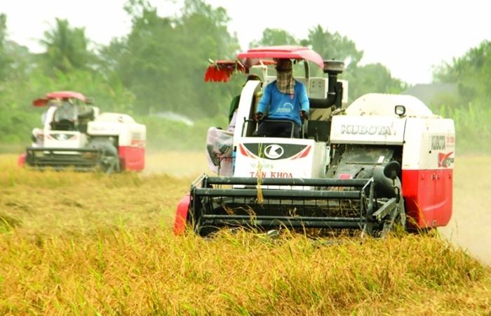 Chuyển đổi số để đưa nông sản Việt vươn xa