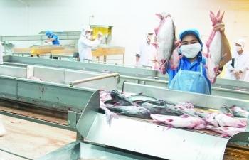 Cá tra Việt sắp có thêm đối thủ đáng
