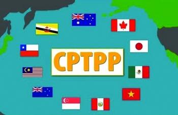Xuất khẩu sang 8 thị trường thành viên CPTPP tăng trưởng mạnh