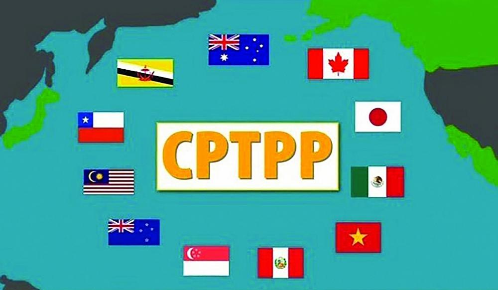 CPTPP hiện gồm 11 nước thành viên