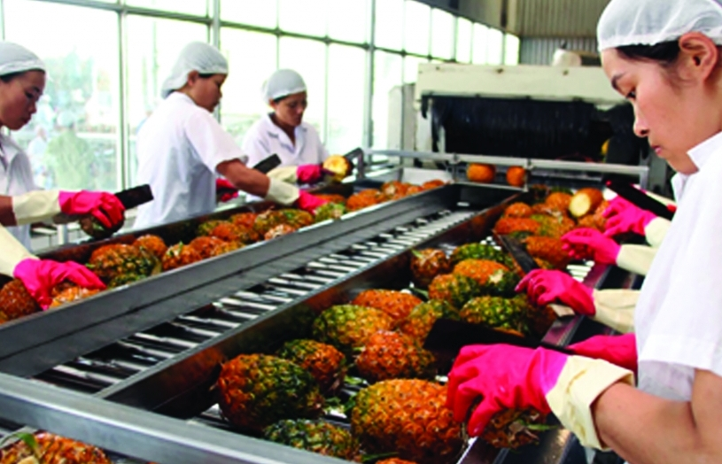 Xuất khẩu rau quả đầy tín hiệu khả quan 2021