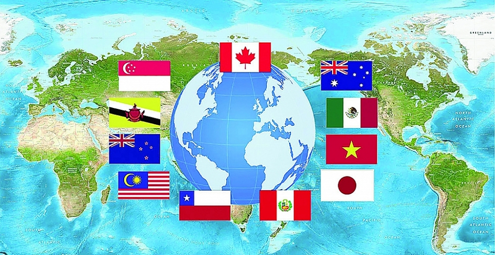 CPTPP gồm 11 nước thành viên Australia, Brunei, Canada, Chile, Nhật Bản, Malaysia, Mexico, New Zealand, Peru, Singapore và Việt Nam. Các nước CPTPP chiếm 13,5% GDP toàn cầu với tổng kim ngạch thương mại hơn 10.000 tỷ USD. Ảnh: ST