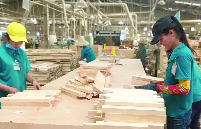 Không kiểm soát tốt tính hợp pháp gỗ nhập khẩu: Xuất khẩu gỗ chịu rủi ro