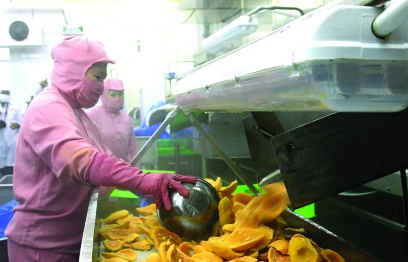 Tăng chế biến sâu: Lối mở cho xuất khẩu nông sản
