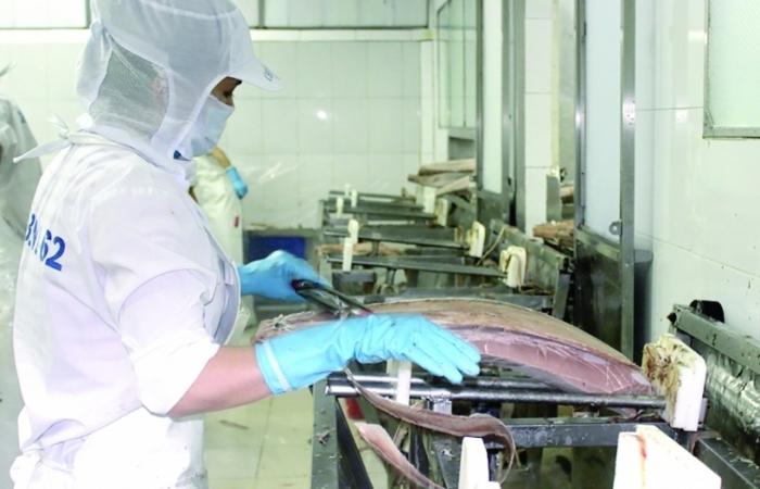 Doanh nghiệp thủy sản mong muốn Đề án cải cách kiểm tra chất lượng, ATTP sớm áp dụng