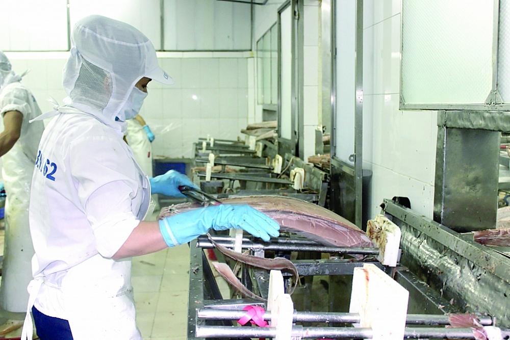 Các DN thủy sản nỗ lực vượt khó để mở rộng xuất khẩu. Ảnh: T.H