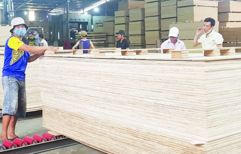 Xuất khẩu gỗ dán -  Tăng trưởng vẫn bấp bênh