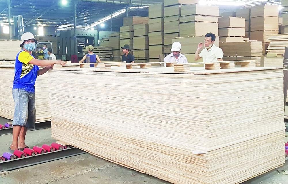 Ngành sản xuất, xuất khẩu gỗ dán của Việt Nam đang có nhiều cơ hội mở rộng thị trường. Ảnh: N.Thanh