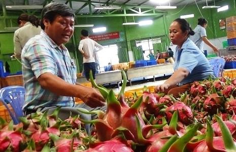 Giá nhiều loại trái cây đồng loạt tăng cao kỷ lục
