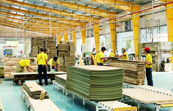 Đối diện hàng loạt rủi ro về pháp lý, ngành gỗ cần làm gì?