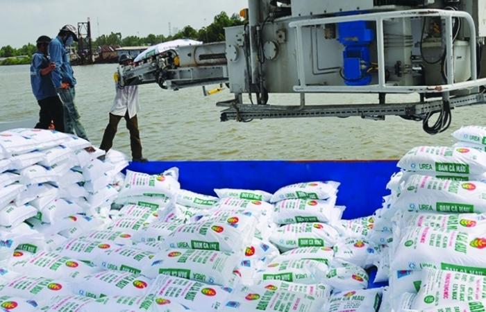 Giá phân bón trong nước tăng cao, vì sao chưa tạm dừng xuất khẩu?