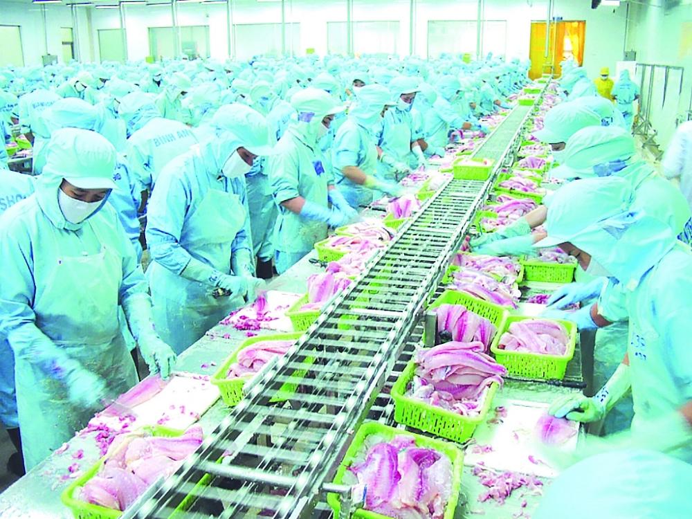 Giá mặt hàng thuỷ sản của Việt Nam tại nhiều nước khu vực châu Phi hiện đang rất cạnh tranh. Ảnh: Nguyễn Thanh
