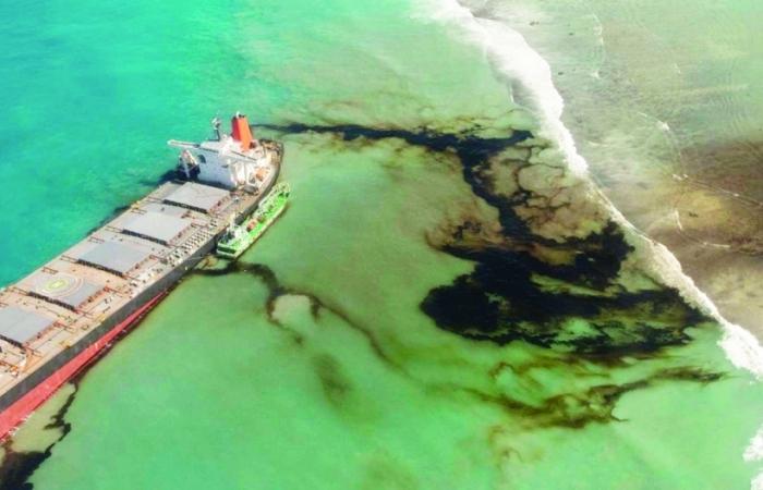 Mauritius đối mặt thảm họa sinh thái và kinh tế do sự cố rò rỉ dầu
