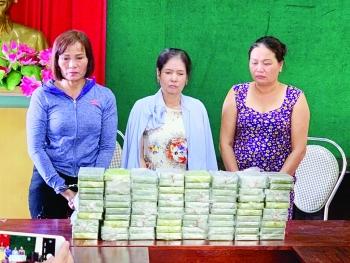 Hải quan tăng cường đấu tranh với tội phạm ma túy xuyên quốc gia