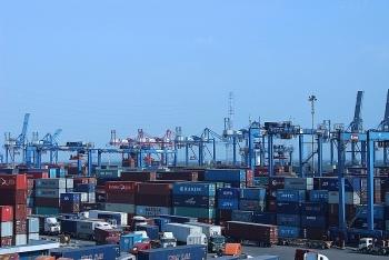 Bố trí khu vực riêng thông quan nhanh hàng hóa qua cảng Cát Lái