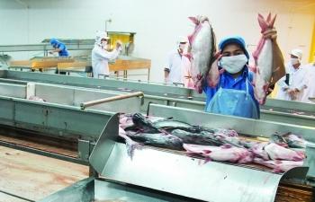 Thuế chống bán phá giá cá tra-basa xuất sang Hoa Kỳ giảm mạnh