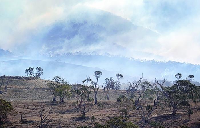 Gian nan cuộc chiến chống biến đổi khí hậu