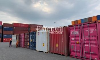 Nhập khẩu thịt lợn về cảng Cái Mép giảm mạnh