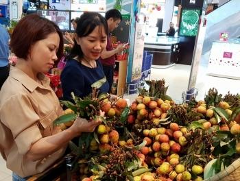 500 tấn vải thiều Lục Ngạn đã có mặt tại chuỗi bán lẻ Saigon Co.op