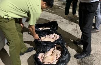 Bình Phước: Bắt giữ hơn 300 kg thịt gia cầm không đảm bảo an toàn thực phẩm