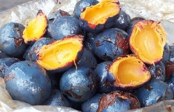 Món ngon từ quả cọ nơi đất Tổ