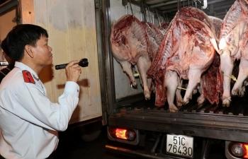 TP Hồ Chí Minh tập trung toàn lực  chống Dịch tả lợn châu Phi