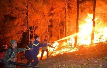 Cháy rừng khủng khiếp tại Nghệ An - Hà Tĩnh