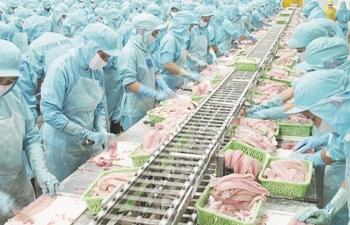 Cá tôm mất giá, xuất khẩu thủy sản chỉ
